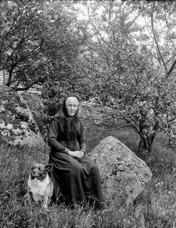 Singel kvinne med hund
